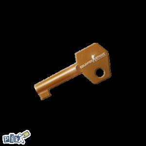 CS:GO Capsule Key ( steam CS:GO CSGO CS GO )