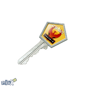 Operation Phoenix Case Key ( steam CS:GO CSGO CS GO )