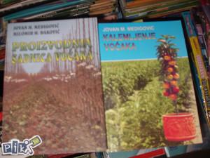 Proizvodnja sadnica voćaka / voćarstvo