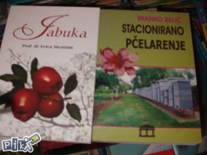 Jabuka / uzgoj / voćarstvo